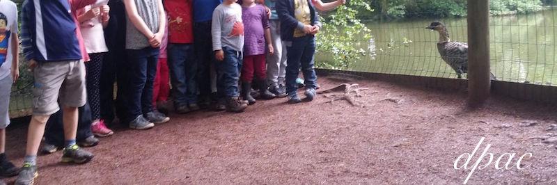 zoo groupe