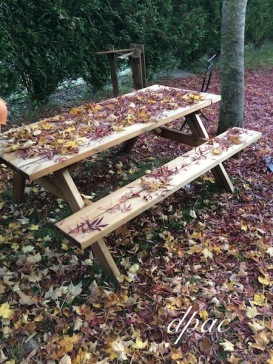 automne-table