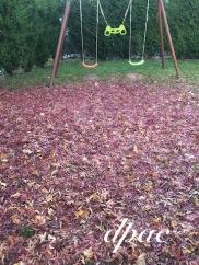 automnebalancoire